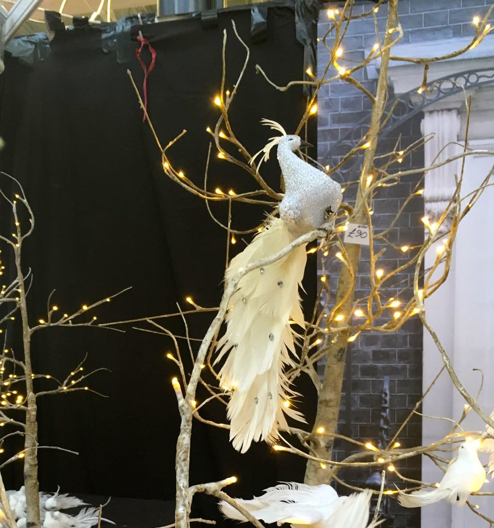 TWINKLY TREES AND MORE FEATHERS