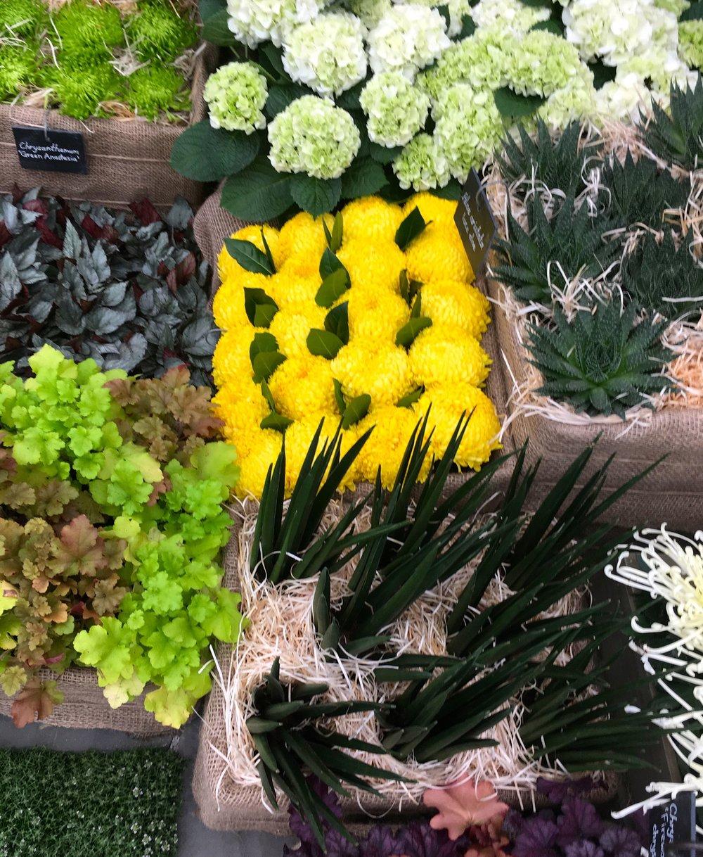 GP Flower Market.jpg