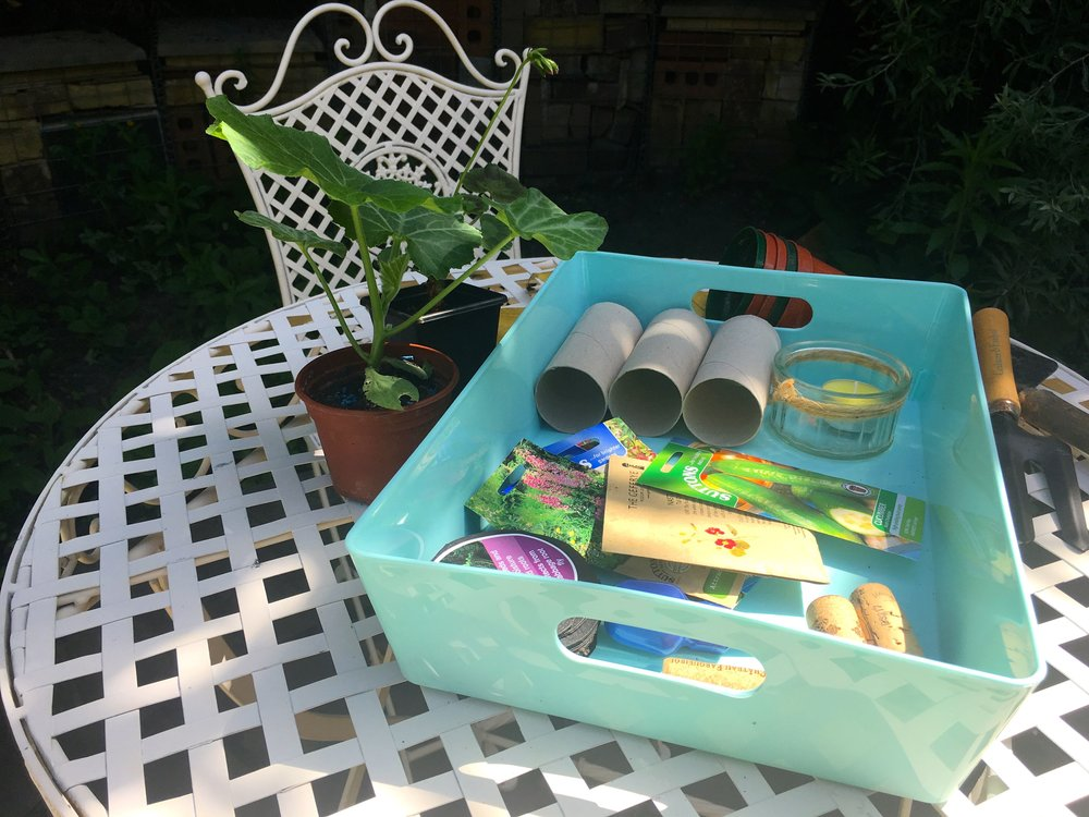 Using my Wham! tray to collect garden paraphernalia