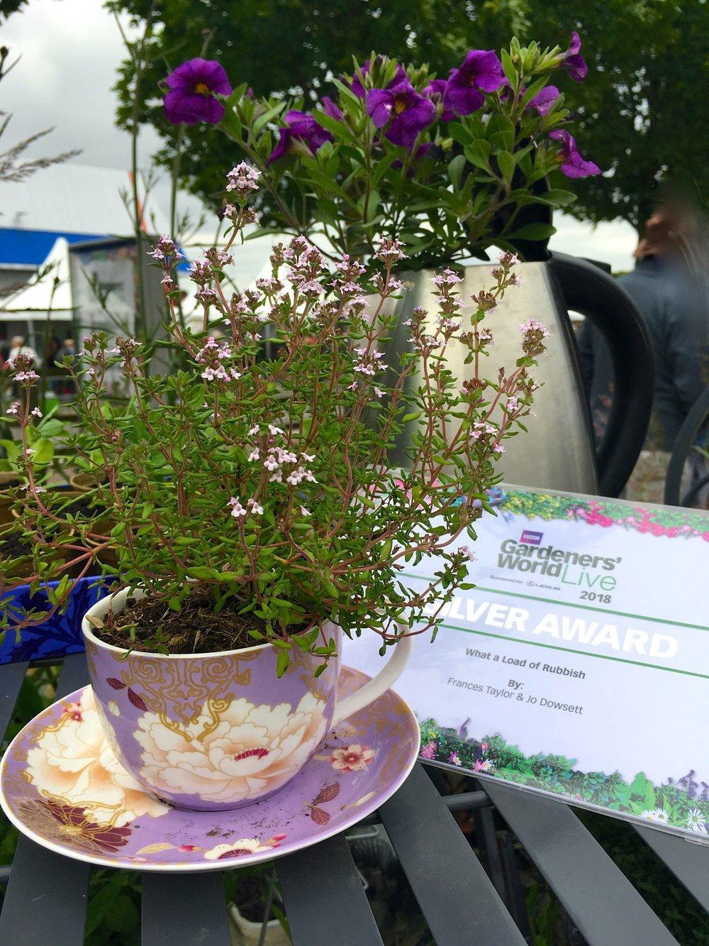 A purple cup of herb tea
