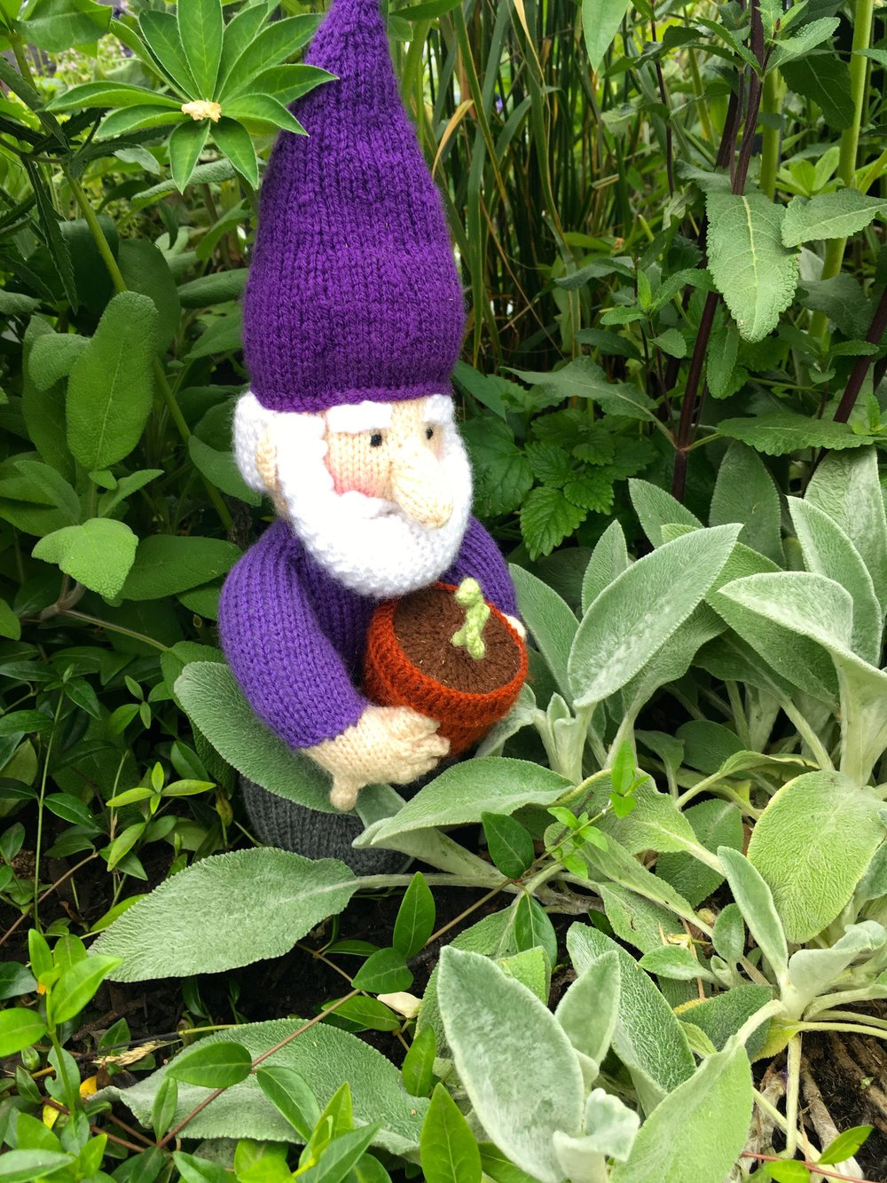 A purple knitted gnome, of course