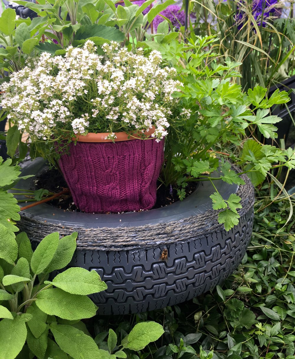 A KNITTED POT WARMER, OF COURSE