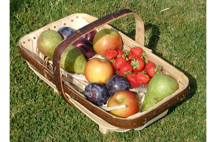 ROYAL SUSSEX TRADITIONAL GARDEN TRUG Photo Credit: Made to Last