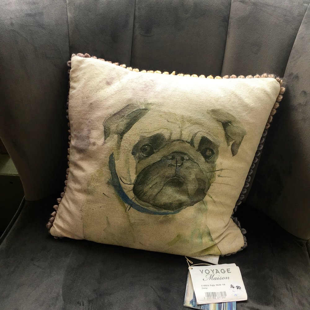 A pug to share your chair