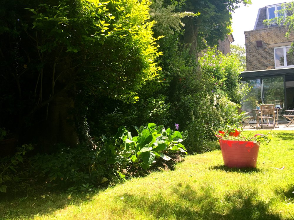 gardening in the sun