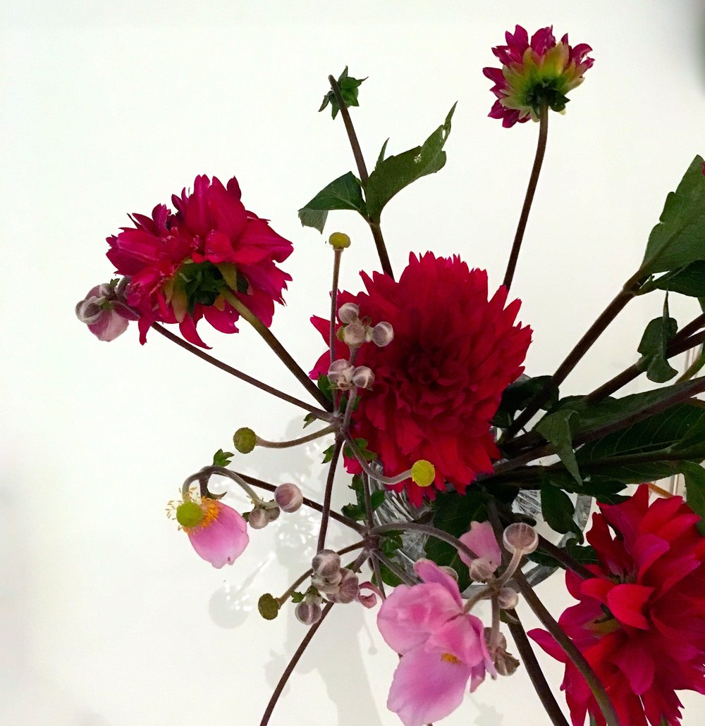 dahlias and japanese anemone from dad's garden
