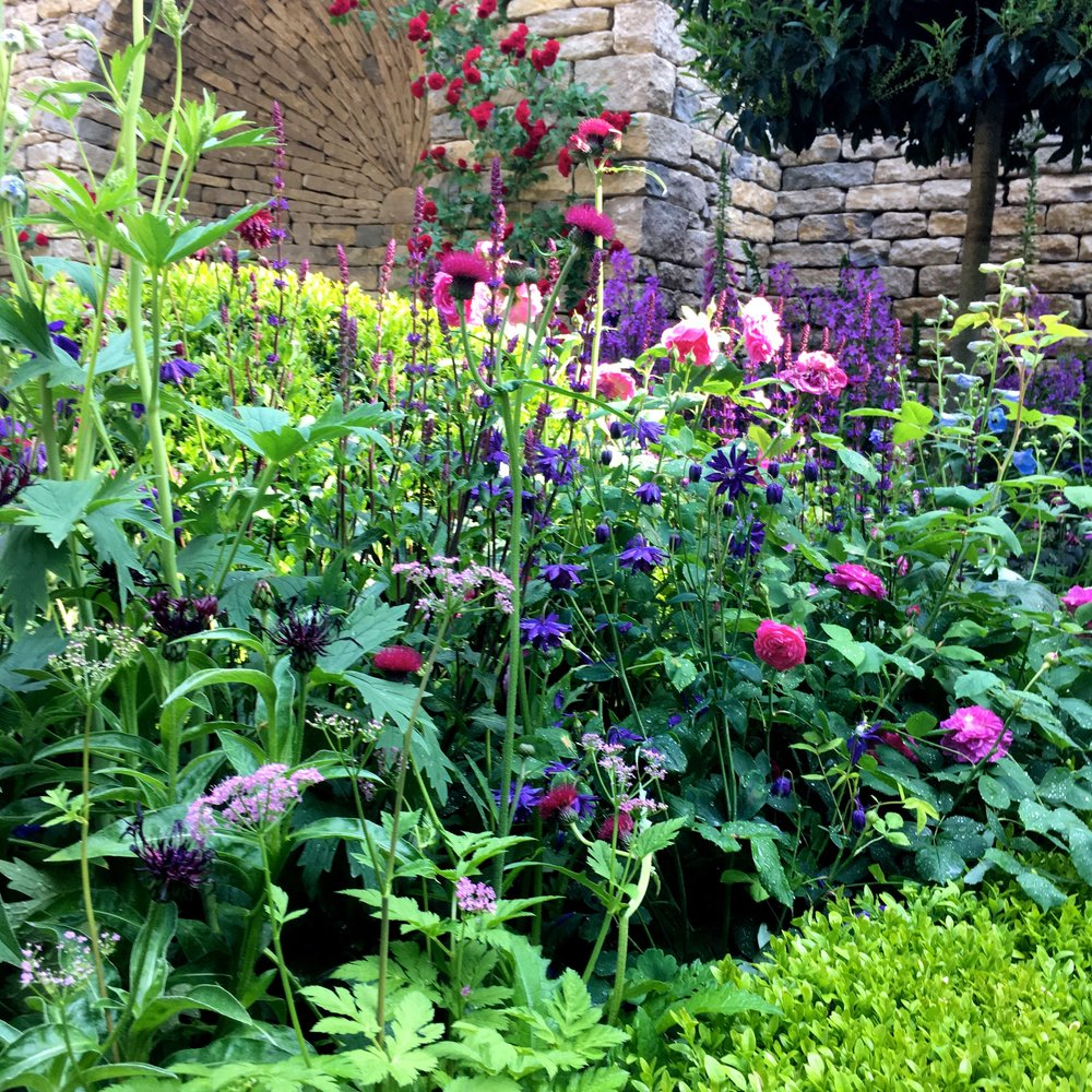 Pinks and purples of the planting against the green and the cool stone arch