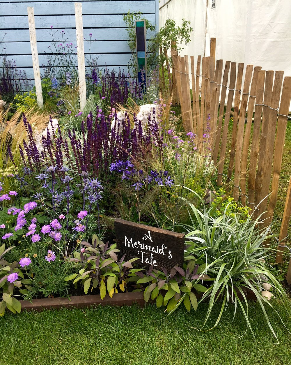 At first glance a pretty normal garden at Gardeners' World Live
