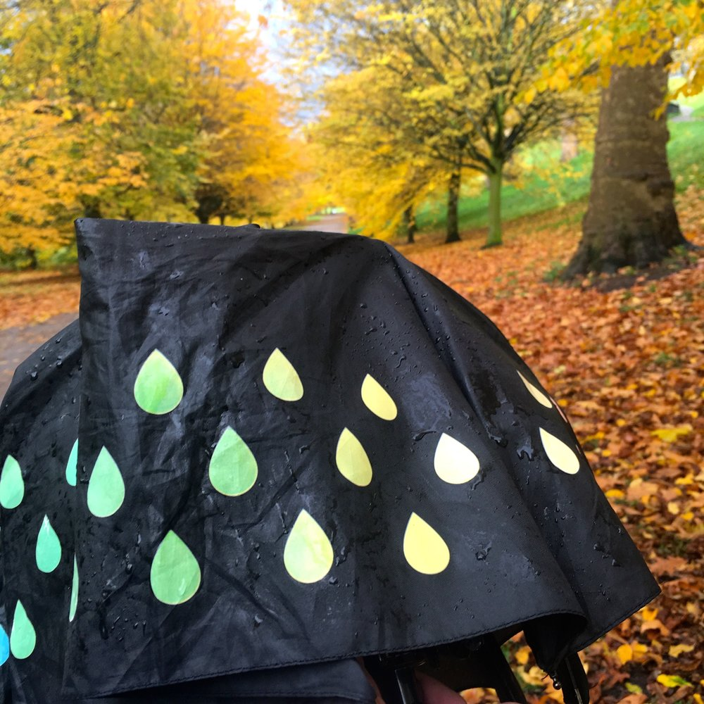 rain and autumn leaves in greenwich park