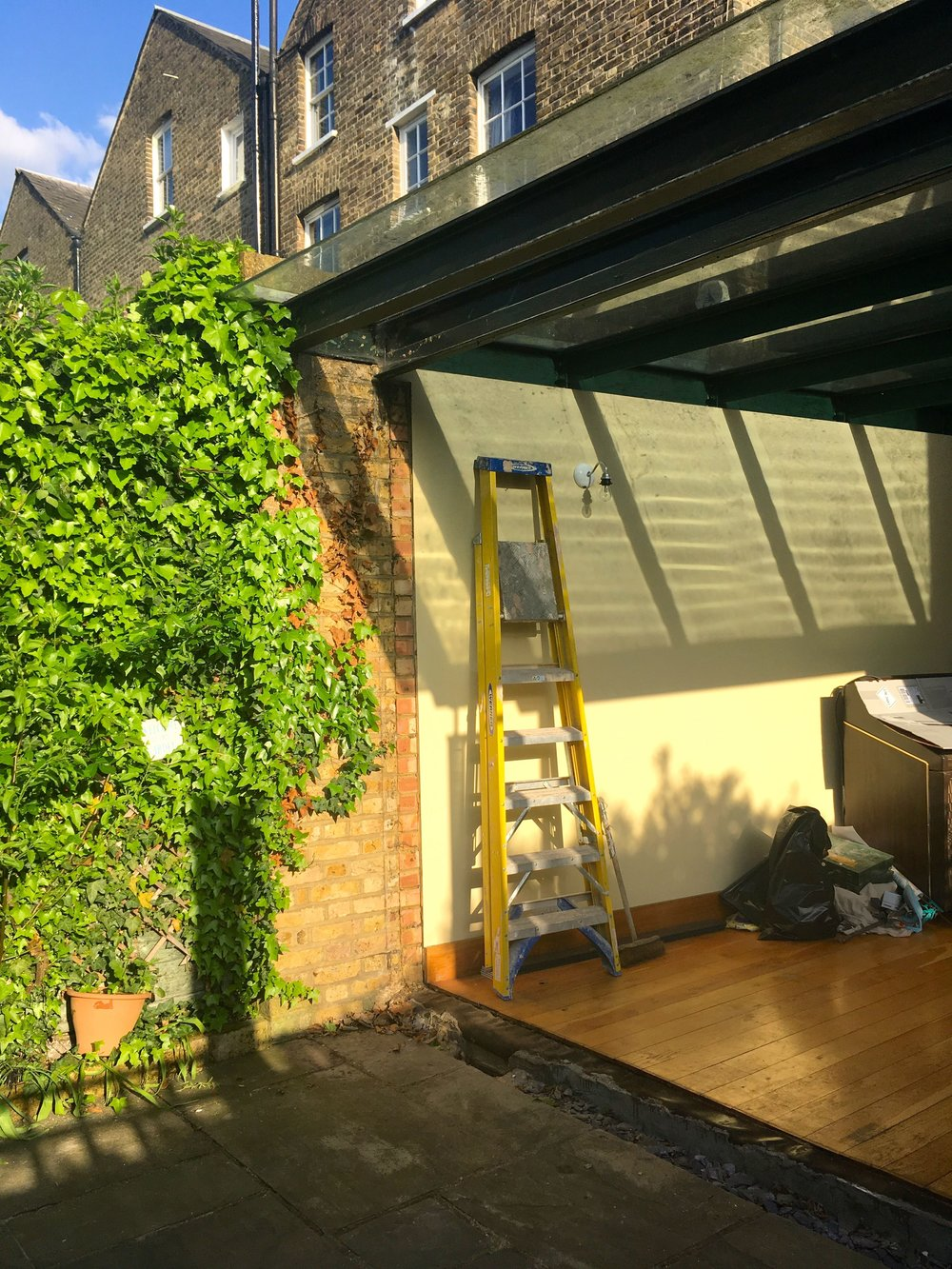 MAY:  CONSERVATORY NEWS - AND PROGRESS!