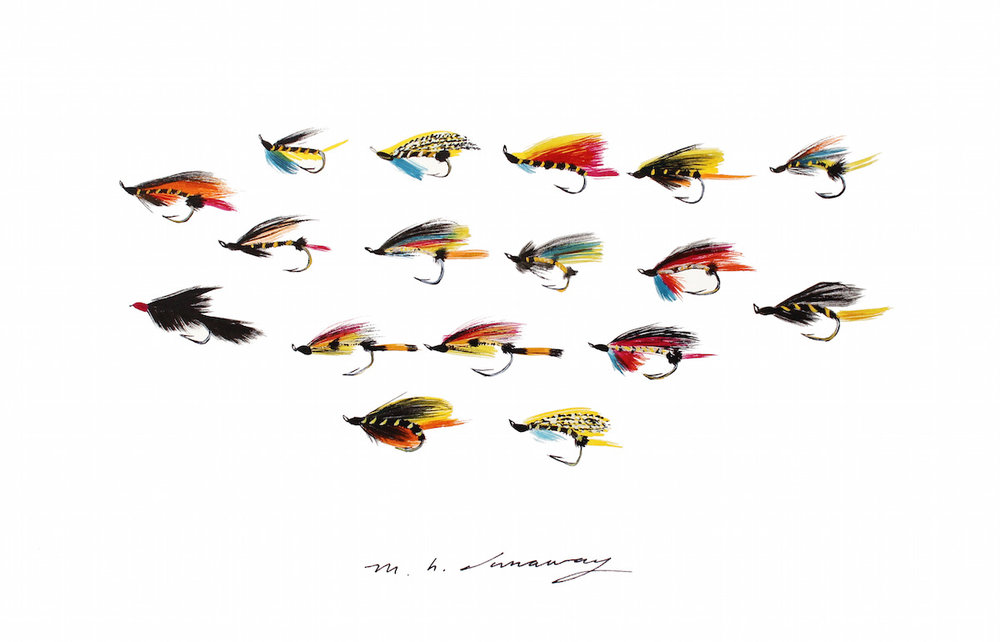 Single Hook Salmon Flies, England 10x14 inches, acrylic ink on paper, 2015