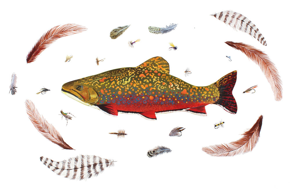 Brook Trout, Madison River, Montana 18x24 inches acrylic ink on paper, 2015