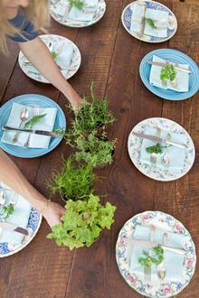 herb centerpiece summer table