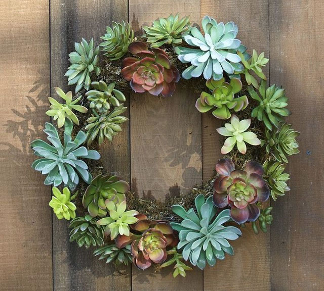 succulent wreath found on our favorite houzz.com