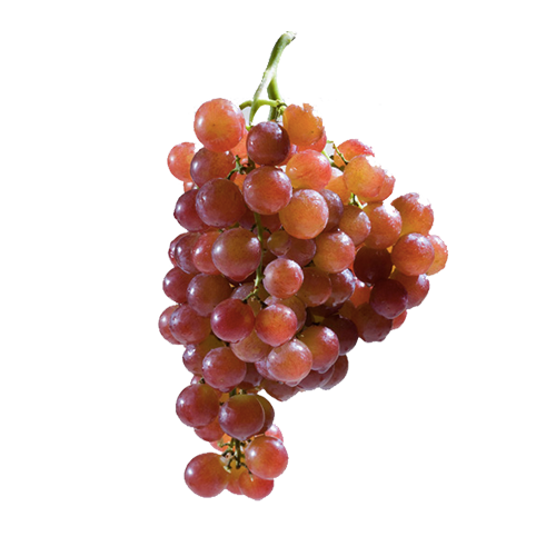 TABLE GRAPES     Origin: Chile, Peru