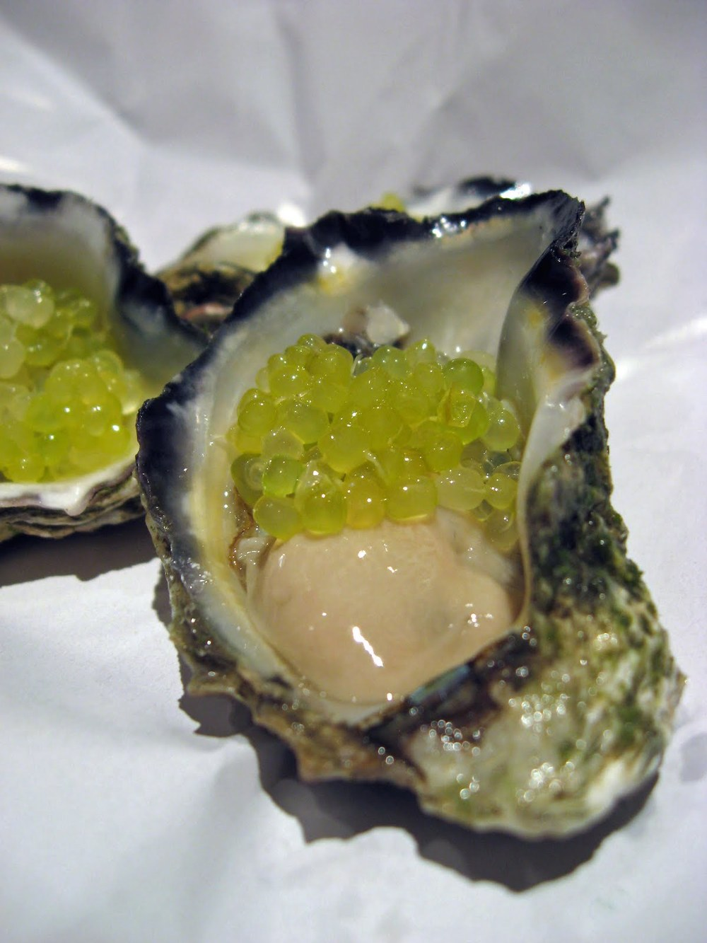oysters & finger limes 1.jpg