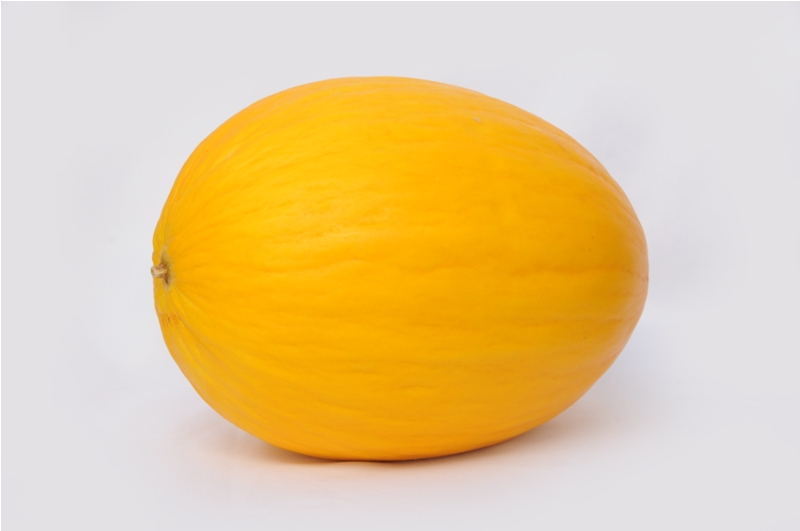Melon Gold.JPG