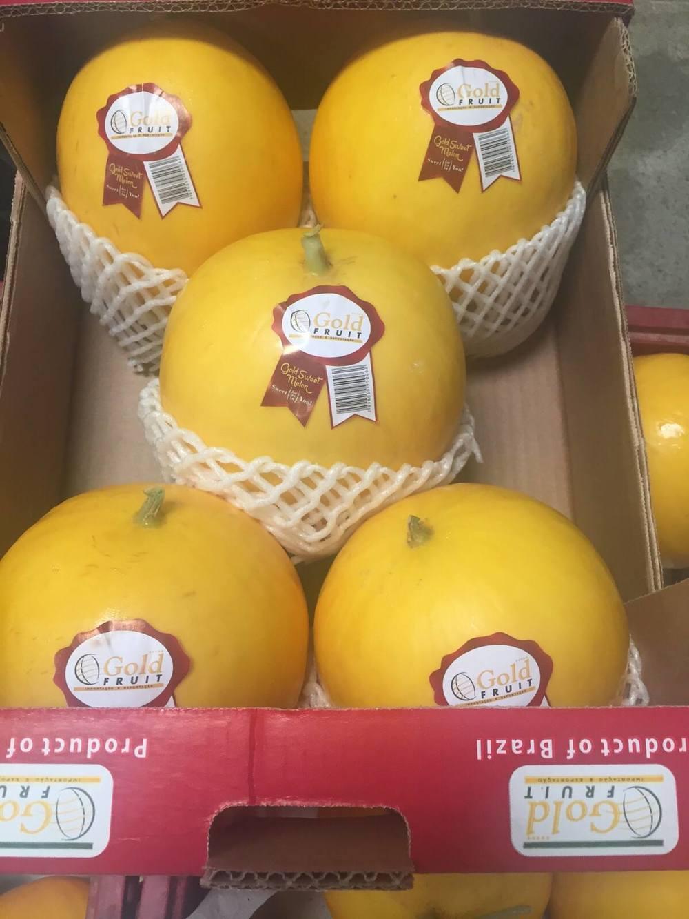 melon jaune gold.jpg
