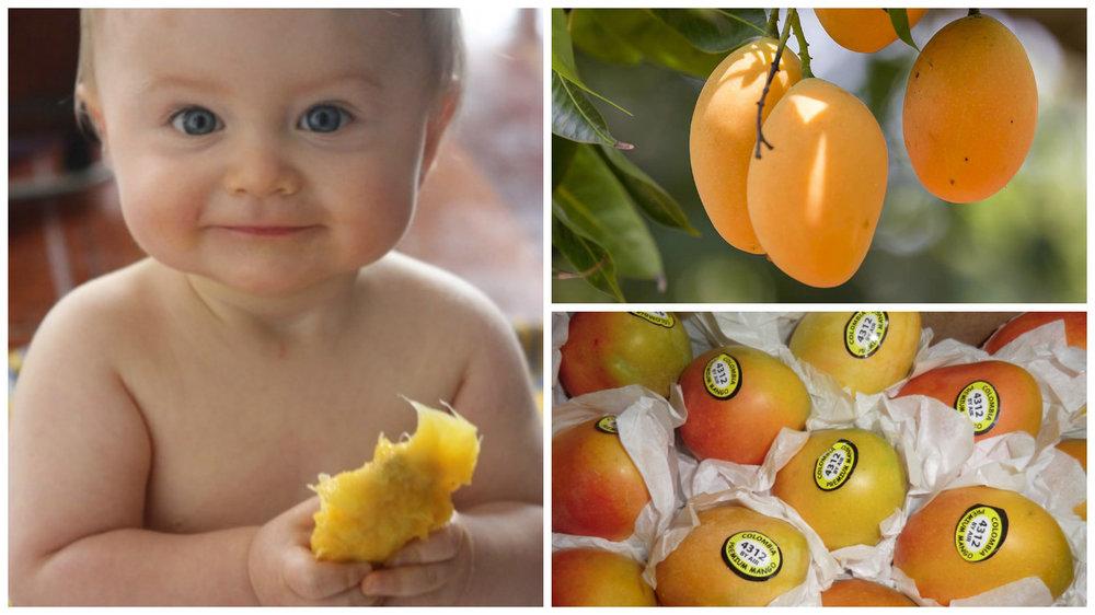 babies mango.jpg