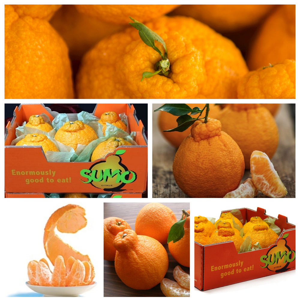 sumo citrus Usa.jpg