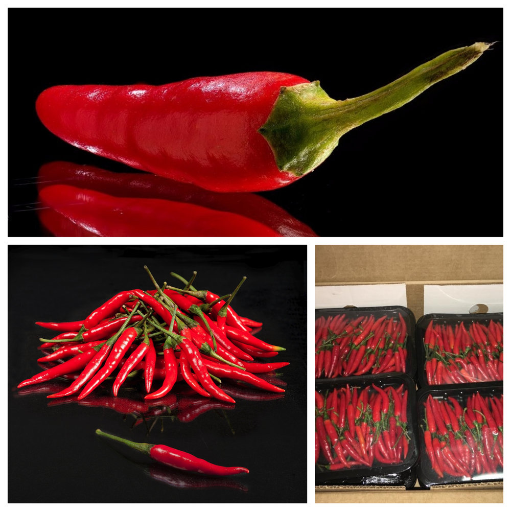 piment Thai red.jpg