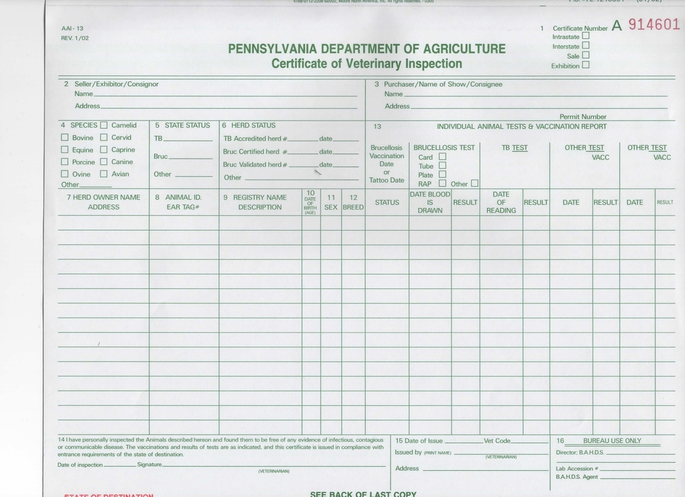 Health Cert  Country Of Origin Certificate Sample