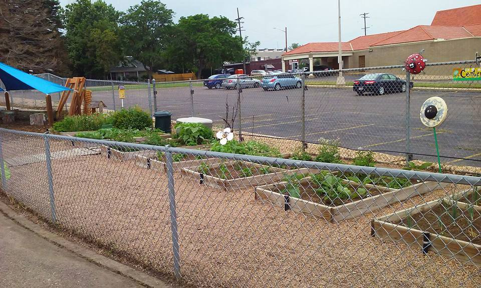 Use your green thumb to make a difference -