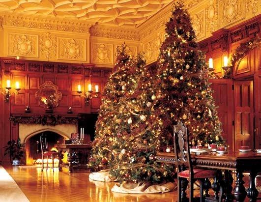 Biltmore House Christmas.jpg