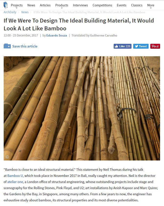 Arch daily Bamboo.JPG