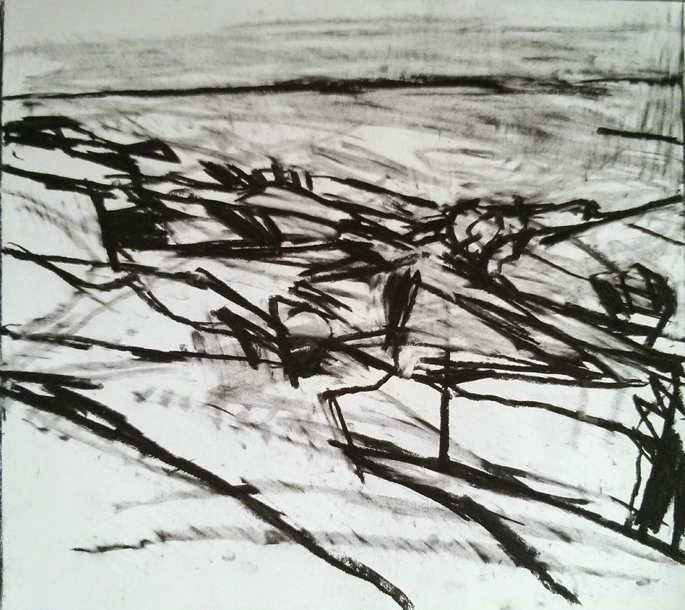 Sandy Hook drawing, 2015.
