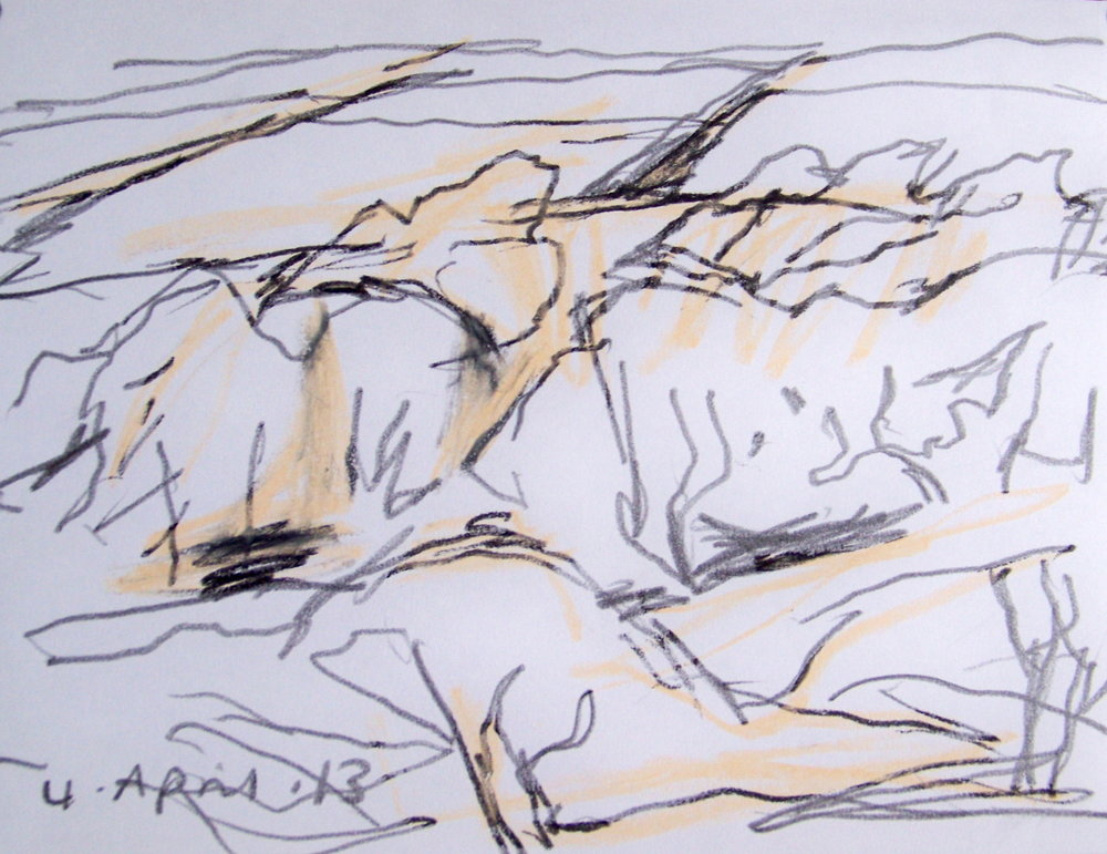 This is one of this morning's drawings, drawn in an approaching snow shower and cold east wind. I'm still dealing with basics in the new painting and have yet to find a way of putting down what the drawing seems to do effortlessly. Something to do with arhythmand a density of marks I think.