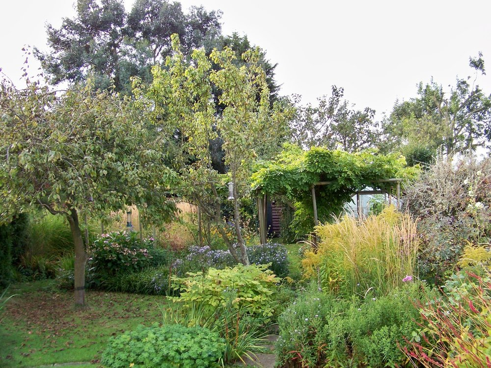The last day of september and the garden is looking very autumnal this morning.