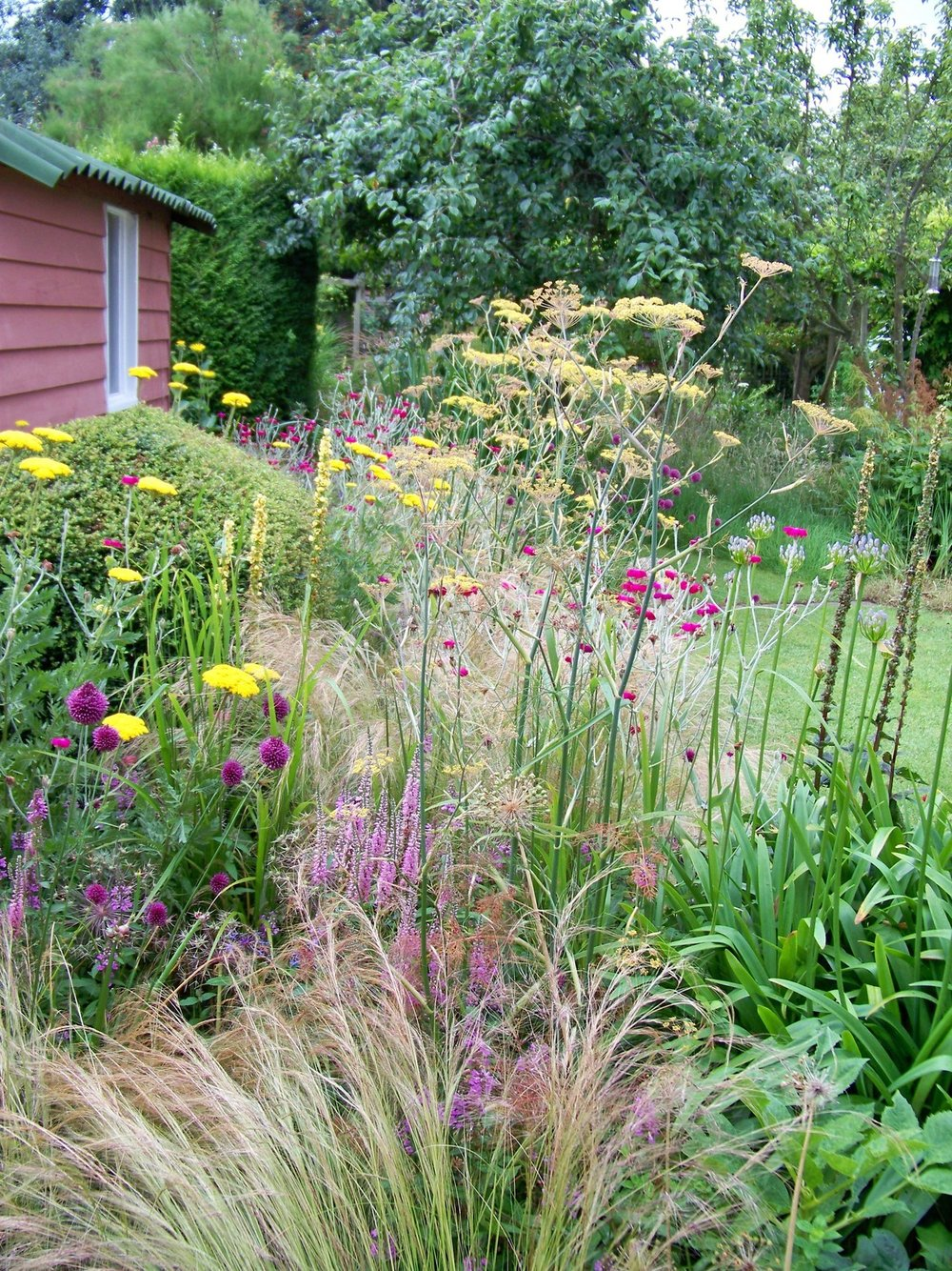 27th July 2012. In the garden early this morning.