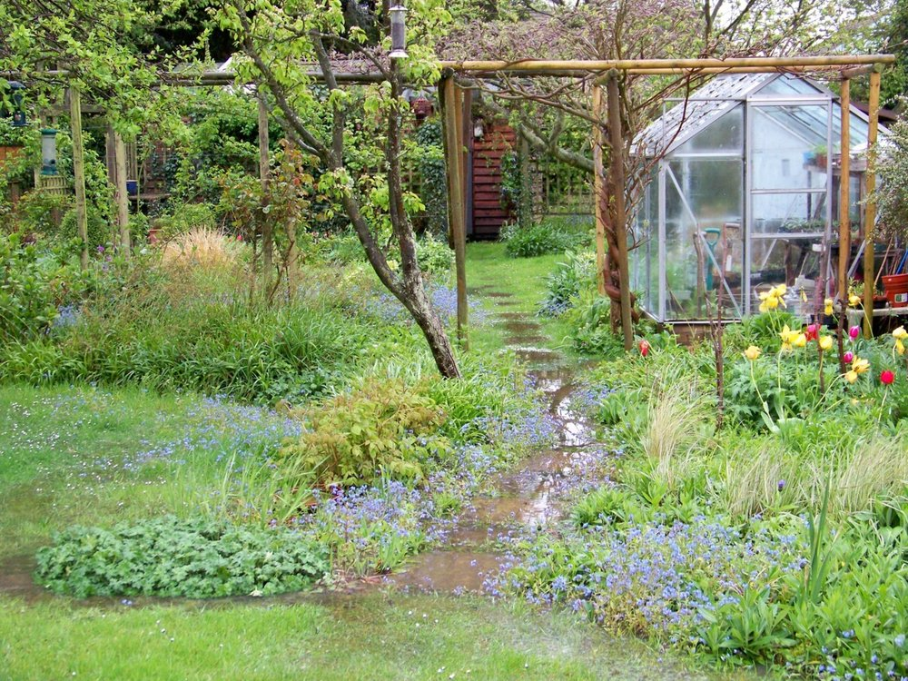 3rd May 2012.More heavy over-night rain and the garden is laying with water again this morning.