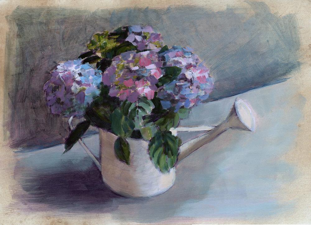 Hydrangeas Can by Karen Mortimore.jpg