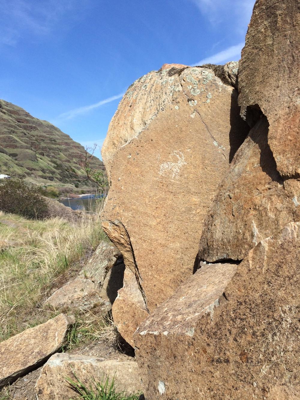 Buffalo Eddy Petroglyphs