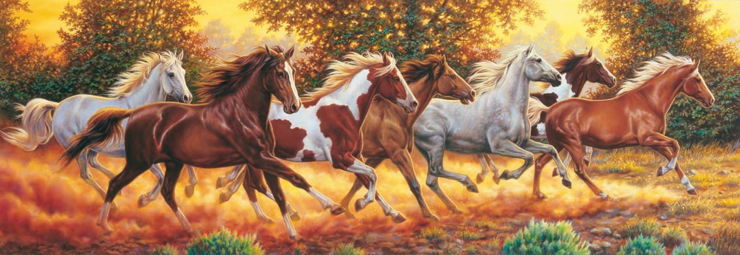 panoramic running horses jigsaw puzzle 1000pc red cat gift shop