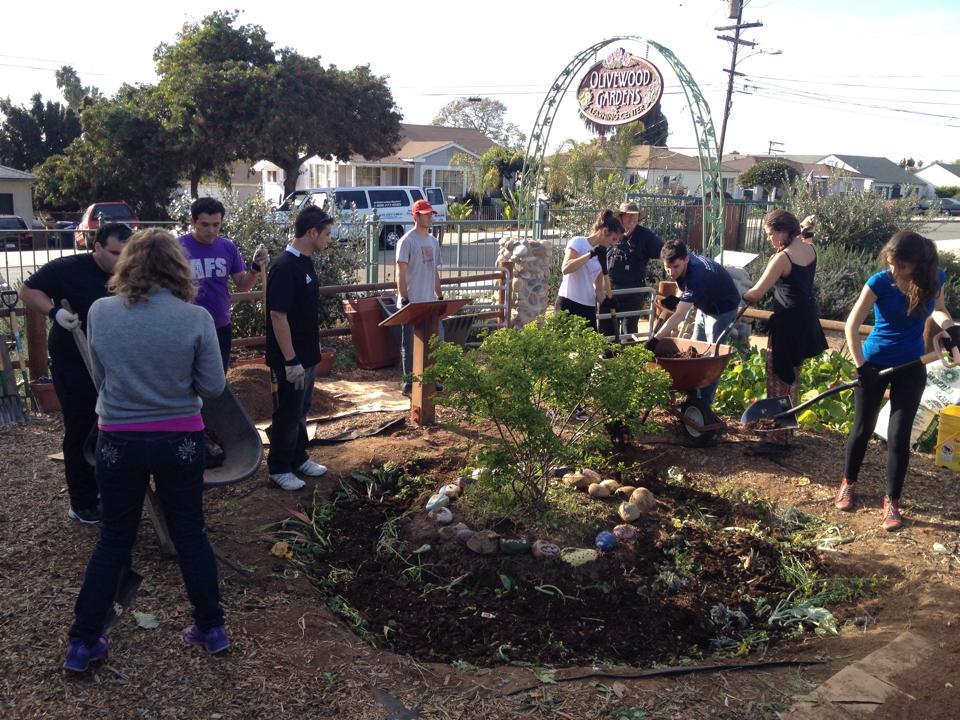 AFS Global Prep en un proyecto de servicio comunitario en Olivewood Gardens