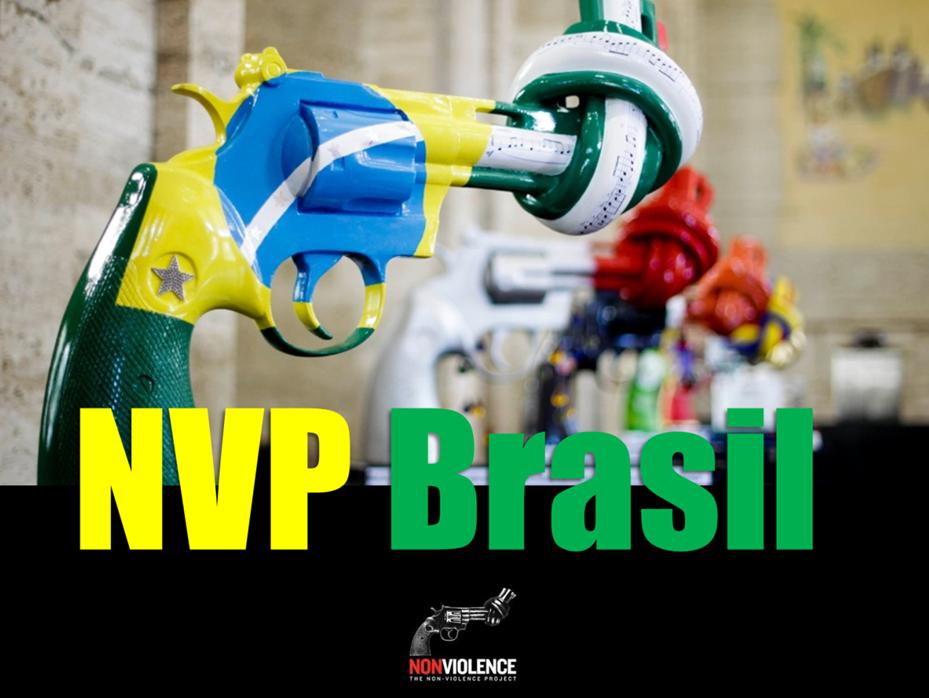 nvp brasil colour.png