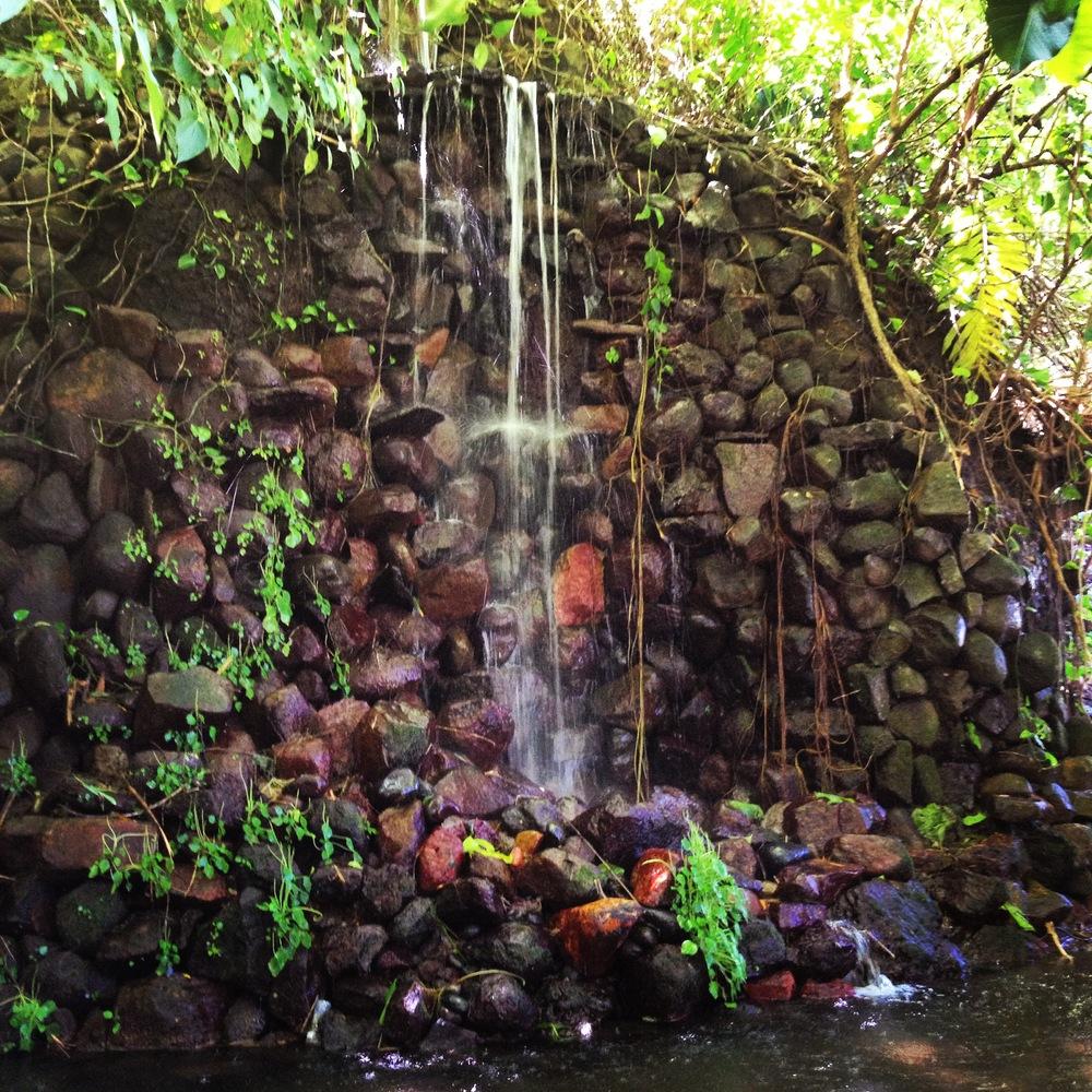 Waterfall in the Jardín Botánico