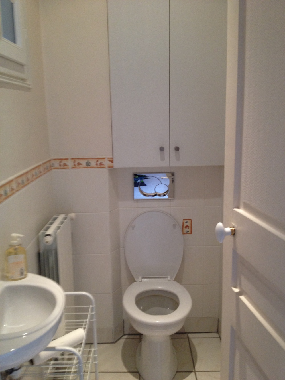 Only one apartment with a toilet & sink in the same room