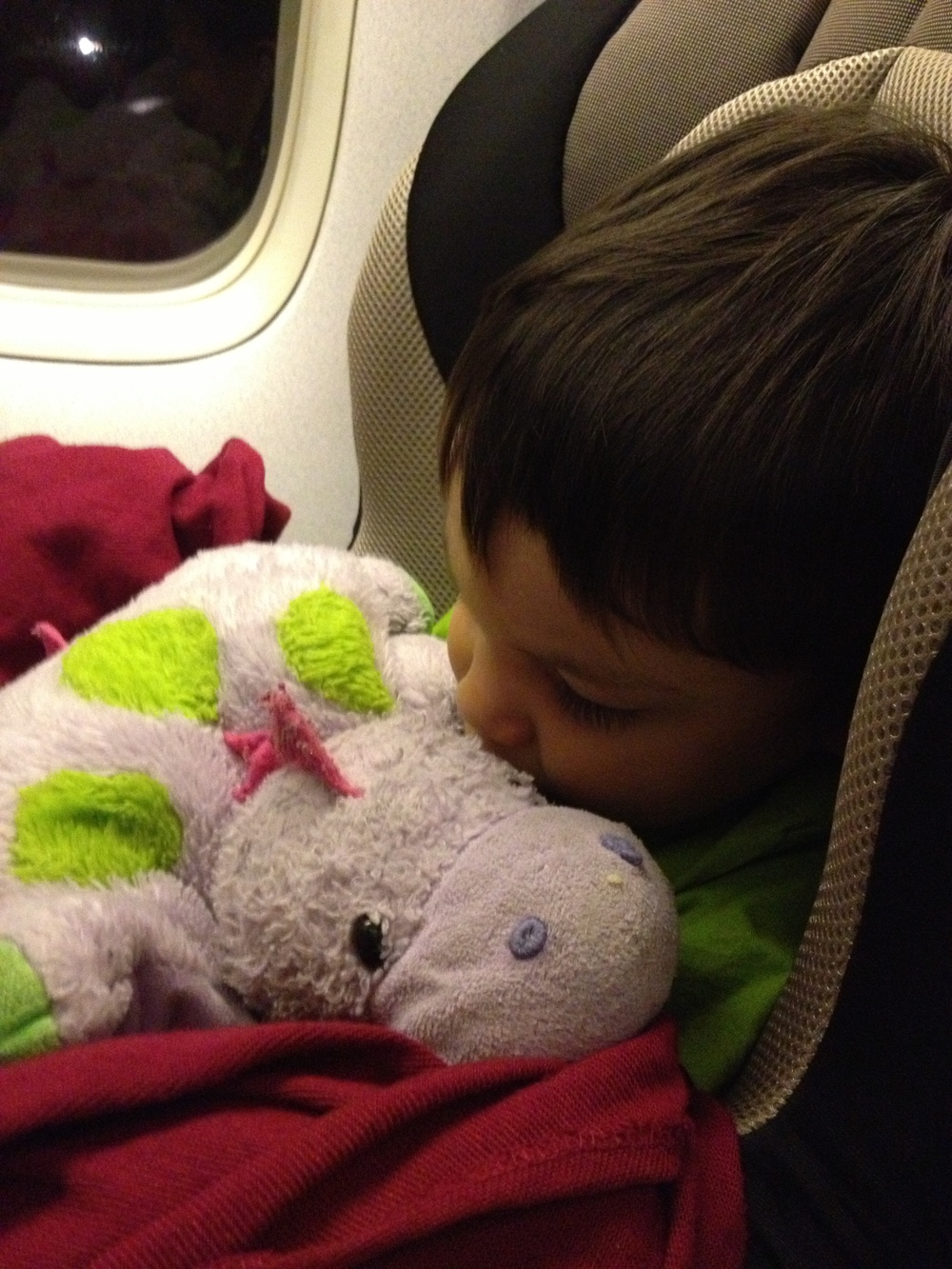 All ready for the flight in his car seat and with his favourite stuffed toy, Baby Dino.