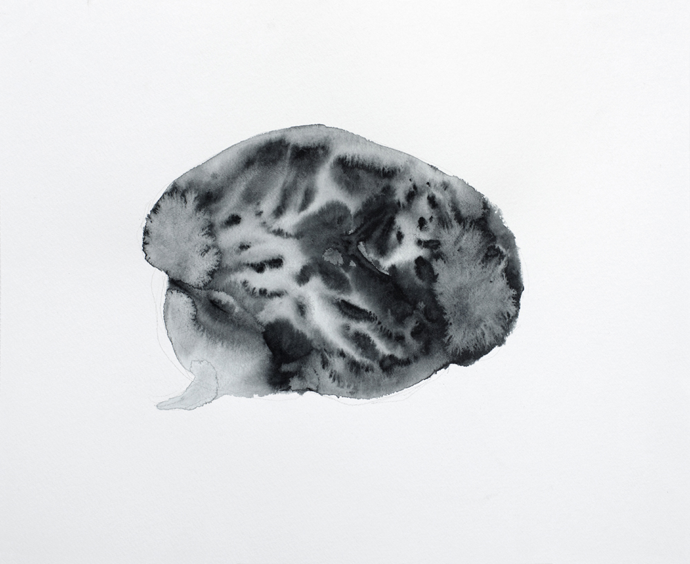 BRAIN (2013) watercolor and pencil on paper 32 x 40 cm