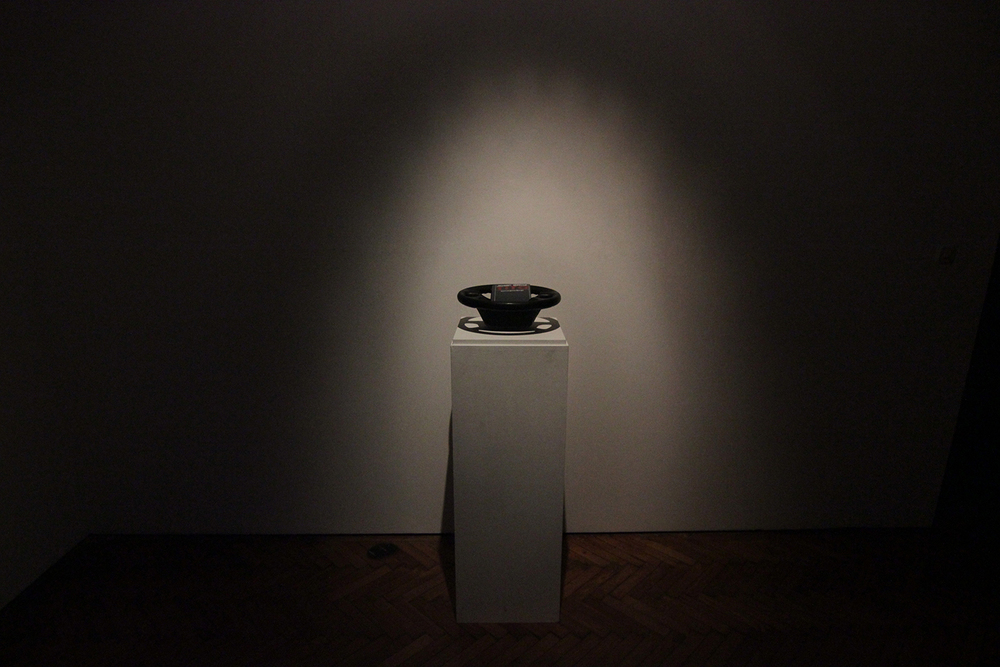 SELFMANAGEMENT (2014)  OBJECT DIMENSIONS VARIABLE