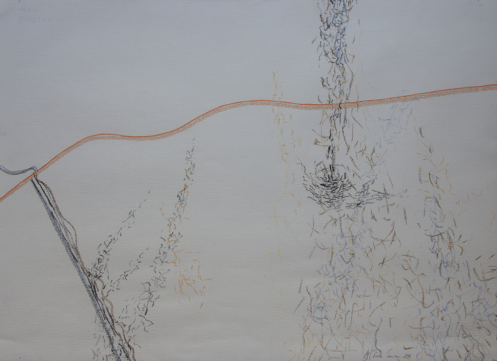 FLYING SOULS/ LÂNGA NOI (1994) PENCIL  AND PASTEL ON PAPER 57 X 77 CM
