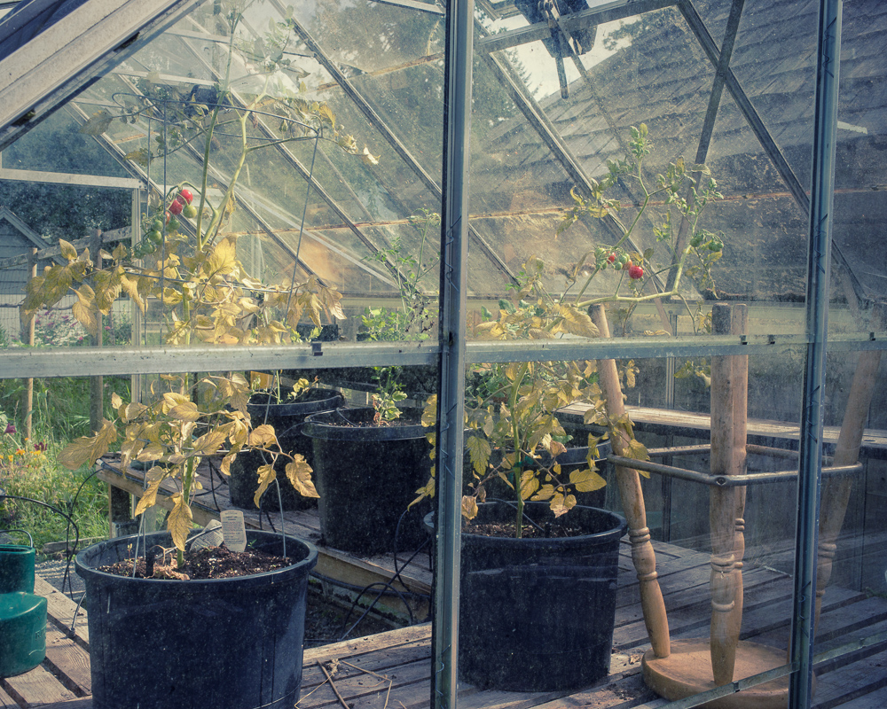 _Garden and Greenhouse_-19.jpg