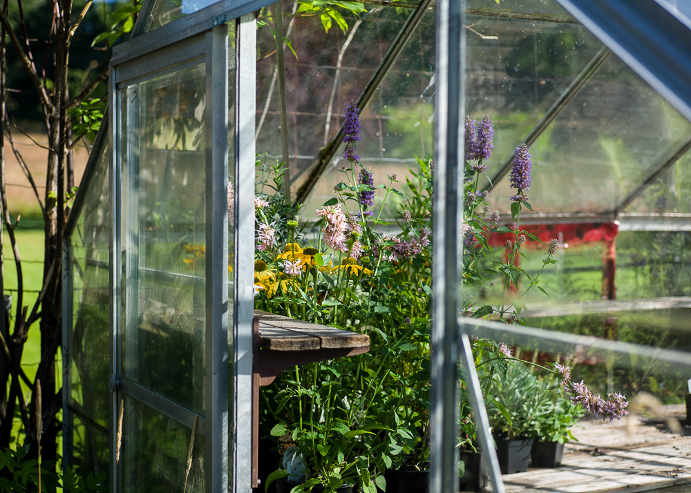 _Garden and Greenhouse_-8.jpg