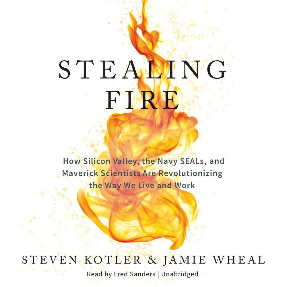 Stealing Fire.jpg