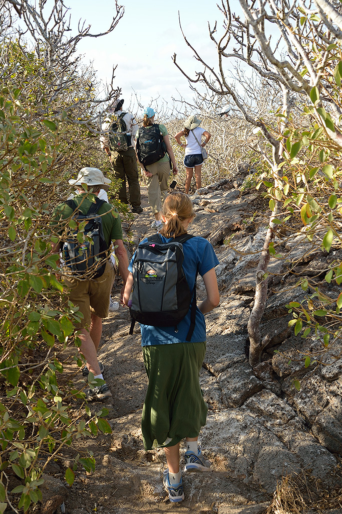 Adventures By Disney provided excellent local guides for our small group of like minded travelers in the Galapagos and in Andean Highlands in Ecuador