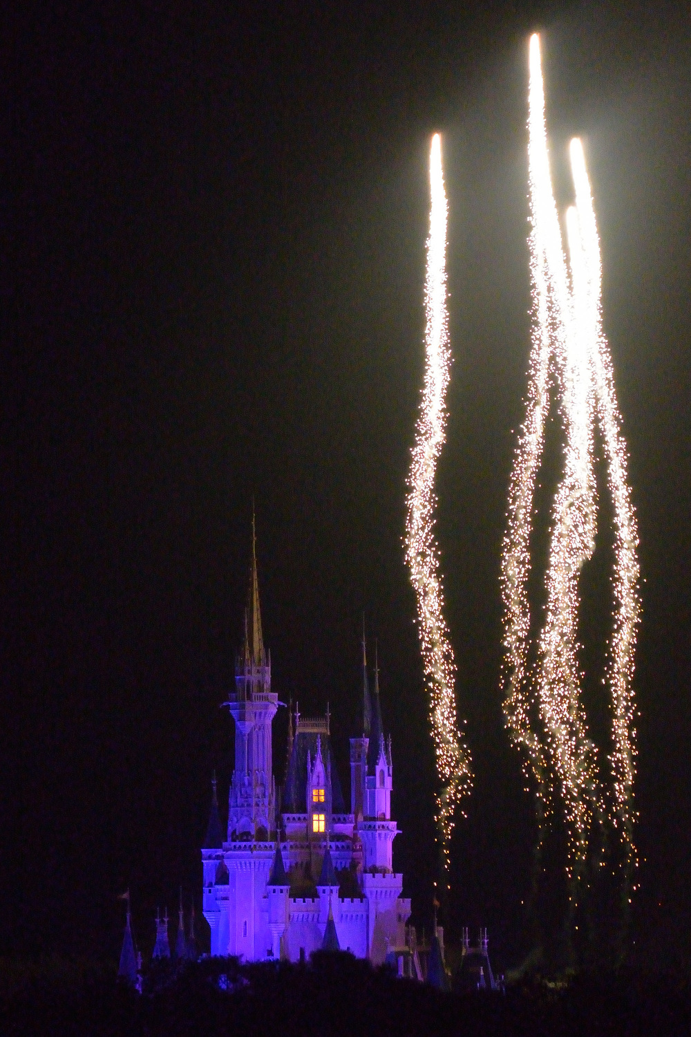 Fireworks can still be seen from some exterior lines in WDW, (Big Thunder Mountain, or Seven Dwarfs Mine Train) so you can enjoy a shorter line and still have a view of the fireworks!